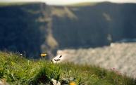 Leica M6 + Ektar 100